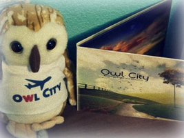 Owl City. by to-eternity