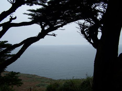 Point Reyes by DailyB