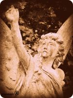 Highgate cemetary 16 by an-neo