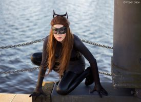 Catwoman - DC Comics by Paper-Cube