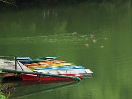 Boats and Ducks by AgiVega