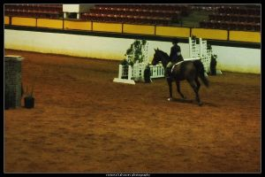 Winter I show 3 by blondy0262