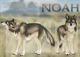 Noah : Ref Sheet by Nylak