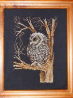Cross Stitch: Screech Owl by DragomirEmil