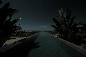 Swimming at night by PasoLibre