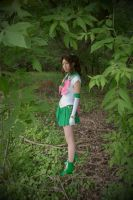 Sailor Jupiter ACEN2010 by tfcreate