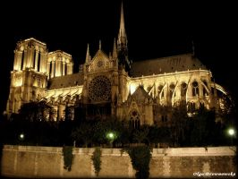 Notre Dame by night by Rivenna
