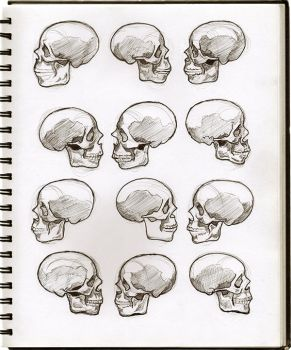 05 Skulls by SeaQuenchal