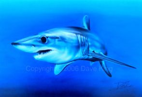 Mako Shark Airbrush Painting by superchickenn123