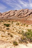 San Rafael Reef by sequential