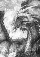 Dragon. by AugustAnna