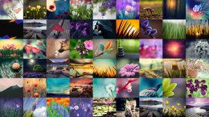 Free Wallpaper Collection 1 by tari7