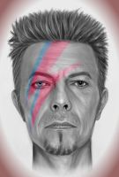 Bowie by rosabelieve