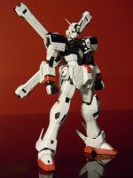 MG Crossbone Gundam Full Cloth by Wontonslol