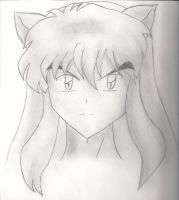 Inuyasha in pencil by misty9118