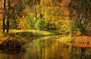 Autumn view... _44_ by my-shots