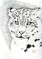 Snow Leopard Sketch by FATRATKING