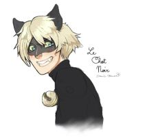 Le Chat Noir by N-A-R-I