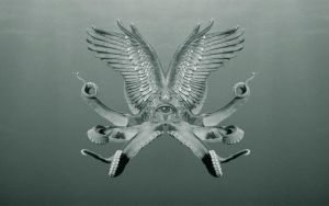 octopus by gnomzdziupli