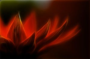 cold flames by kodo34