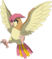 Pidgeotto by Porygon2z