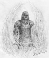 Daeron the wild elf paladin by morcondil