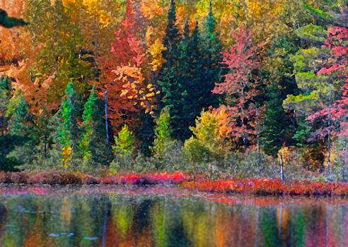 Fall On The Water by debrosi