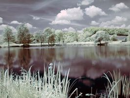 IR Ink Lake by d-minutiv