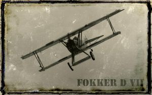 Fokker D VII Wallpaper by spunkyreal
