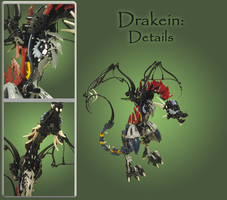 Drakein: Details by retinence