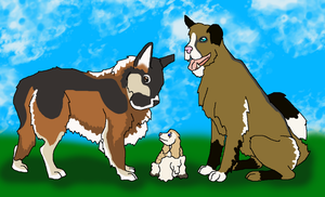 New dogs in MKC by J4-Coltrain
