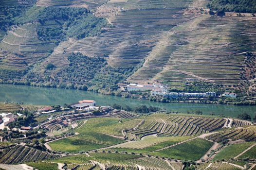 Douro Valley 1416 by spoii