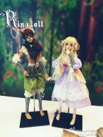 Some pics about the PNW BJD expo 2013 2 by Ringdoll
