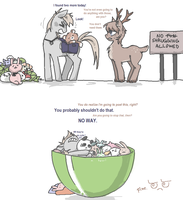 Strangely obsessed by AskPonyPrussia