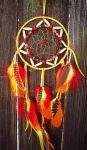 Phoenix Dream Catcher Rebirth by xsaraphanelia
