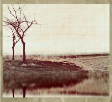 Vintage Tree 02 by SIRHC777
