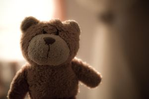 Ted by Fettoni
