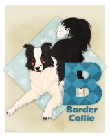 B is for Border Collie by Plaguedog
