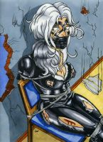 Black Cat in Peril by gustorak