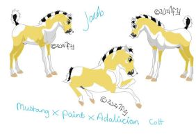 Design A Foal Contest by StarCrossedPsycho