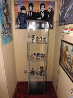 New Display Case by OppaFaustusStyle
