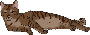 Chocolate Tabby by DeathPhantom