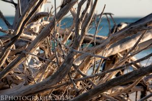 Coquina Beach 001 by BPhotographic