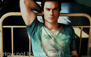 338.Ian Somerhalder.Wallpaper by 05olenka03