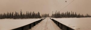 Bridge Over Columbia in Winter by skip2000