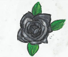 Black Rose Dying by Plexure