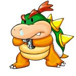Baby Bowser by Trancua