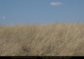 Grasslands 3 by SalsolaStock