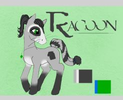 Racoon_PonyAdoptChallenge by LilLoate