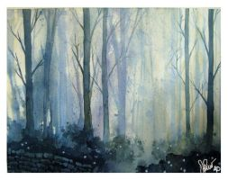 Forest Path by Jackin